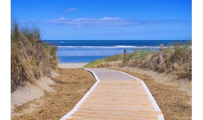 PAPERMOON Fototapete »Langeoog Dunes«, Vlies, in verschiedenen Größen kaufen