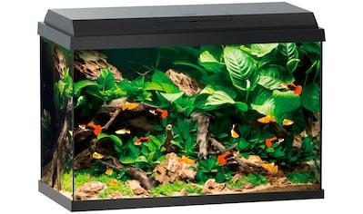 JUWEL AQUARIEN Aquarium »Primo 70«, 70 Liter, BxTxH: 61x31x44 cm, schwarz kaufen