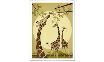 Wall-Art Poster »Giraffes«, Tiere, (1 St.), Poster, Wandbild, Bild, Wandposter kaufen