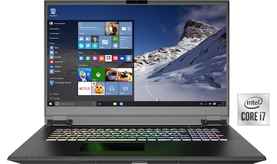 XMG Notebook »PRO 17 - E20«, (1000 GB SSD) kaufen