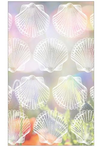 MySpotti Fensterfolie »Look Shells white«, halbtransparent, glattstatisch haftend, 60... kaufen