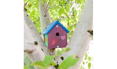 Windhager Nistkasten »Robin«, Bausatz inkl. Farbset zum Bemalen kaufen