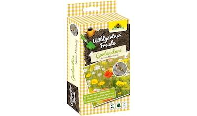 NEUDORFF Blumensamen »WildgärtnerFreude Gartenstars«, 50 g kaufen