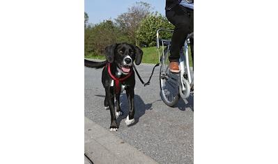 TRIXIE Hundeleine »Biker - Set«, für große Hunde kaufen