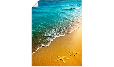 Artland Wandbild »Seesterne«, Strand, (1 St.), in vielen Größen & Produktarten - Alubild / Outdoorbild für den Außenbereich, Leinwandbild, Poster, Wandaufkleber / Wandtattoo auch für Badezimmer geeignet kaufen