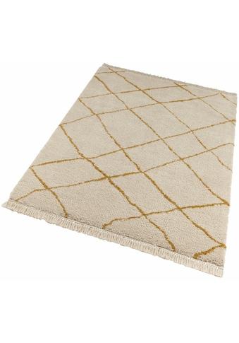 freundin Home Collection Hochflor-Teppich »Primrose«, rechteckig, 35 mm Höhe, Allover Design mit Fransen, Wohnzimmer kaufen