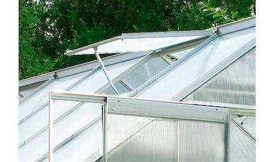VITAVIA Gewächshaus - Fensteröffner »Thermovent«, für Gewächshäuser, stromlos, silberfarben kaufen