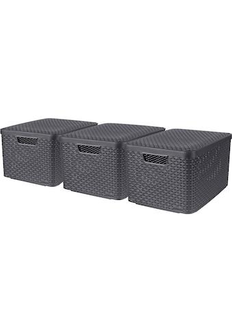 Curver Aufbewahrungsbox »Style L«, (Set, 3 St.), mit Deckel anthrazit. 3 x 30 Liter kaufen