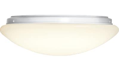 STAR TRADING LED Deckenleuchte »Integra Ceiling«, LED-Modul kaufen