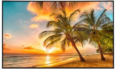 Papermoon Infrarotwandheizung »Barbados Palm Beach«, sehr angenehme Strahlungswärme kaufen