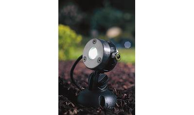 OASE Teichleuchte »LunAqua Mini« kaufen