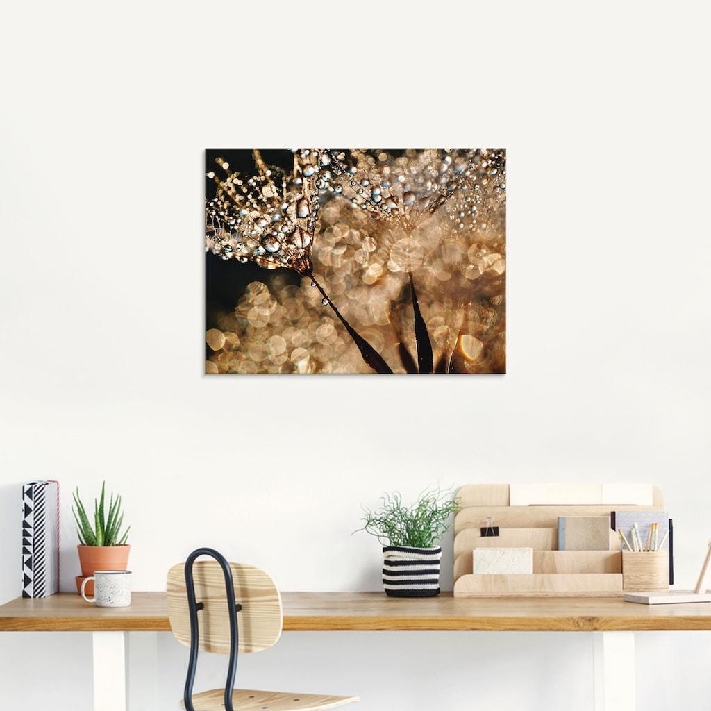 Artland Glasbild »Pusteblume Goldschimmer«, Blumen, (1 St.)