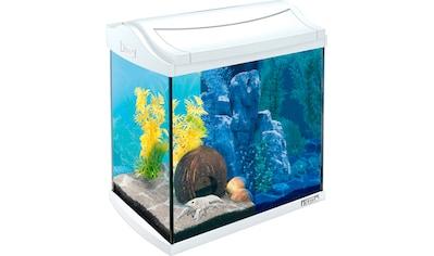 TETRA Aquarien - Set »AquaArt LED«, BxTxH: 38,5x28x43 cm, 30 Liter, inkl. GC 30 Bodenreiniger kaufen