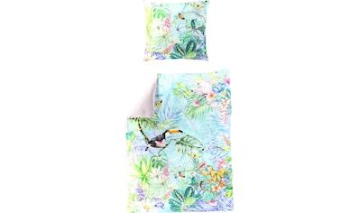 BIERBAUM Wendebettwäsche »Tropical Monkey«, mit tropischem Print kaufen