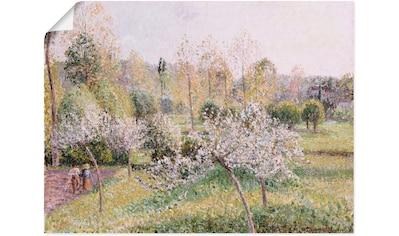Artland Wandbild »Blühende Apfelbäume in Eragny. 1895«, Wiesen & Bäume, (1 St.), in... kaufen