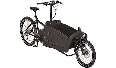 "Prophete E - Bike »CARGO E - Bike 20""/26""«, 8 Gang Shimano Shimano Acera Schaltwerk, Kettenschaltung, Mittelmotor 250 W kaufen"