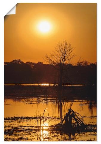Artland Wandbild »Sonnenuntergang II«, Afrika, (1 St.), in vielen Größen &... kaufen