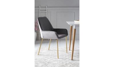SalesFever Armlehnstuhl, mit modernem, messingfarbenem Gestell, im 2er-Set kaufen