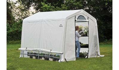SHELTERLOGIC Folien - Gewächshaus BxT: 240x240 cm kaufen