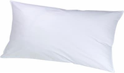 KBT Bettwaren Federkopfkissen »ICE Kopfkissen«, (1 St.) kaufen