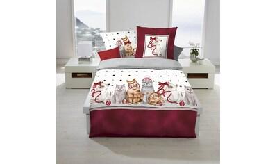 TRAUMSCHLAF Bettwäsche »Weihnachtskatzen«, weihnachtliches Design kaufen