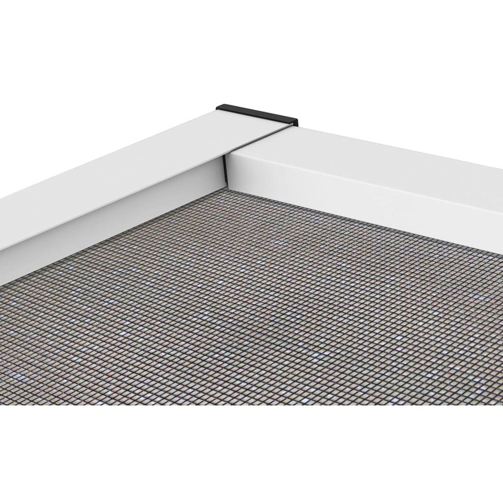 hecht international Insektenschutz-Tür »MASTER SLIM+«, weiß/anthrazit, BxH: 100x210 cm