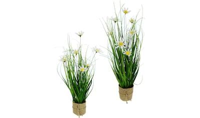 I.GE.A. Kunstgras »Gasbusch« (2 Stück) kaufen