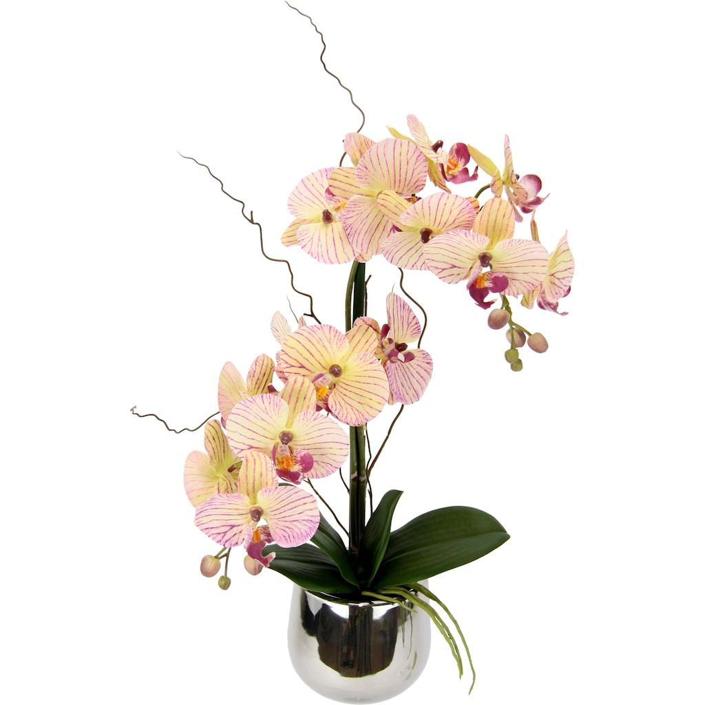 I.GE.A. Kunstpflanze »Phalaenopsis im Topf«