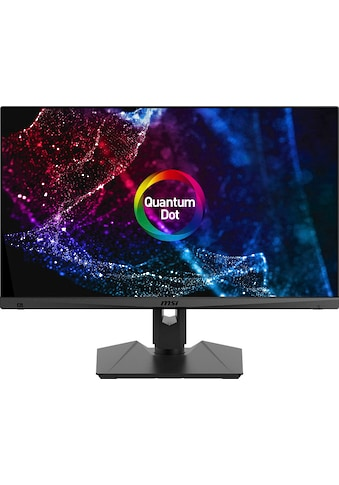 "MSI Gaming-Monitor »Optix MAG274QRF QD«, 69 cm/27 "", 2560 x 1440 px, WQHD, 1 ms... kaufen"