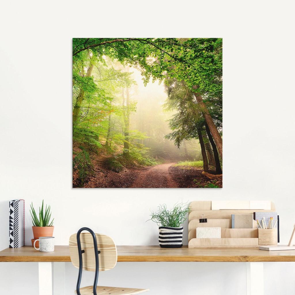 Artland Glasbild »Natürliche Torbögen durch Bäume«, Wald, (1 St.)