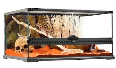 Exo Terra Terrarium, BxTxH: 60x45x30 cm kaufen