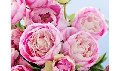 Papermoon Fototapete »Pink Peony Flowers« kaufen