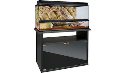 Exo Terra Terrarium, BxTxH: 90,5x46,5x125,5 cm, mit Unterschrank kaufen