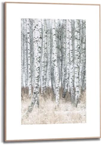 Reinders! Bild »Gerahmtes Bild Birken Naturmotiv - Bäume - Fotografie«, Bäume, (1 St.) kaufen