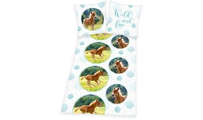 Kinderbettwäsche »Young Collection Pferde«, Herding Young Collection kaufen