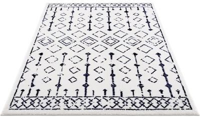 DELAVITA Teppich »Karima«, rechteckig, 12 mm Höhe, Besonders weich durch Microfaser,... kaufen