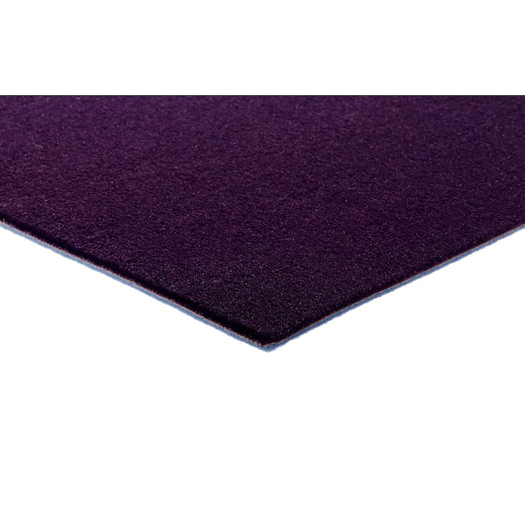 Andiamo Teppichboden »Kira 400«, rechteckig, 8 mm Höhe, Meterware, Breite 400 cm, uni, schallschluckend