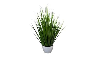 Creativ green Kunstgras (1 Stück) kaufen
