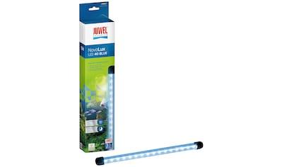 JUWEL AQUARIEN Aquarium LED - Beleuchtung »NovoLux LED 40 blue«, 385 mm / 5 Watt kaufen