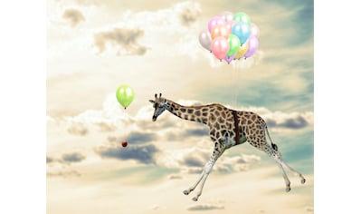 queence Acrylglasbild »fliegende Giraffe« kaufen