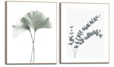 Reinders! Wandbild »Wandbilder Set Eukalyptus blatt Pflanze - Zweig - Naturmotiv -... kaufen