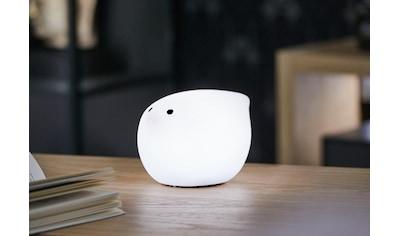 now! by hülsta,LED Dekofigur»mini moonbirdy«, kaufen