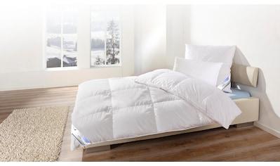 KBT Bettwaren Daunenbettdecke »Canada«, extrawarm, Füllung 60% Daunen, 40% Federn, Bezug 100% Baumwolle, (1 St.) kaufen