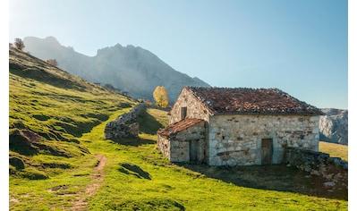 Komar Fototapete »Picos de Europe Alm«, mehrfarbig-natürlich-bedruckt kaufen