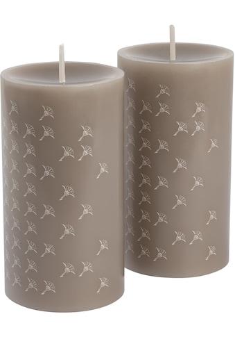 Joop! Stumpenkerze »FADED CORNFLOWER«, Stumpenkerze mit elegantem Kornblumen-Verlauf... kaufen