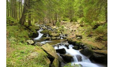 Papermoon Fototapete »Mountain River«, matt, BlueBack, 7 Bahnen, 350 x 260 cm kaufen