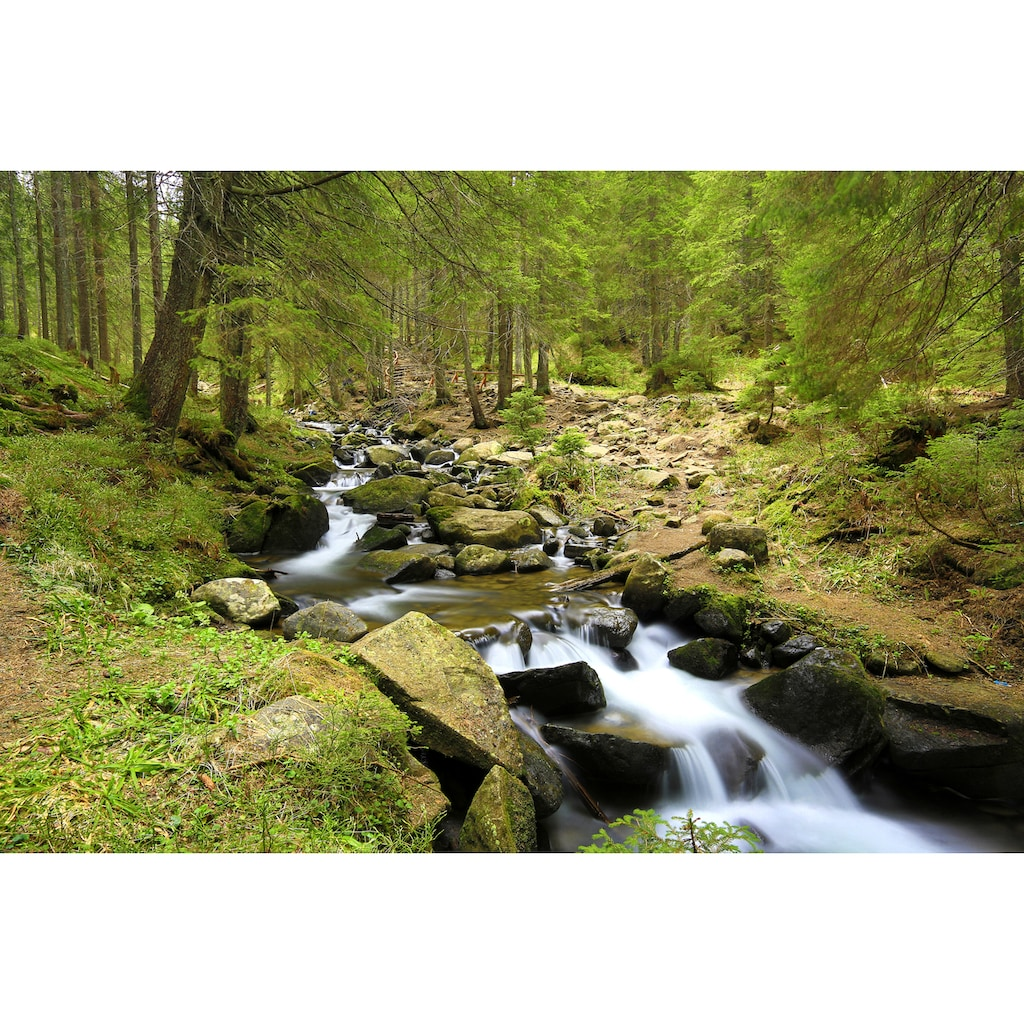 Papermoon Fototapete »Mountain River«, matt, BlueBack, 7 Bahnen, 350 x 260 cm