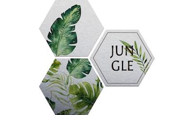 Alu - Dibond - Druck »Kvilis  -  Jungle« (Set) kaufen
