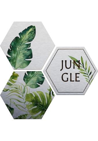 Wall-Art Alu-Dibond-Druck »Kvilis - Jungle«, (Set) kaufen