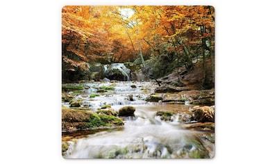 Wall-Art Glasbild »Autumn Waterfall«, 50/50 cm kaufen